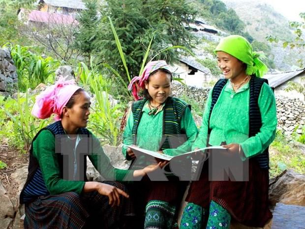 越南53个少数民族经济和社会发展情况调查报告出炉 hinh anh 1