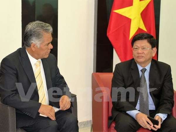 越南岘港市与墨西哥托卢卡市充分挖掘合作潜力 hinh anh 1