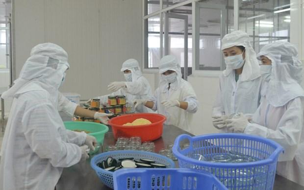 2016年越南北部地区工业、手工业及贸易展将在广宁省下龙市举行 hinh anh 1