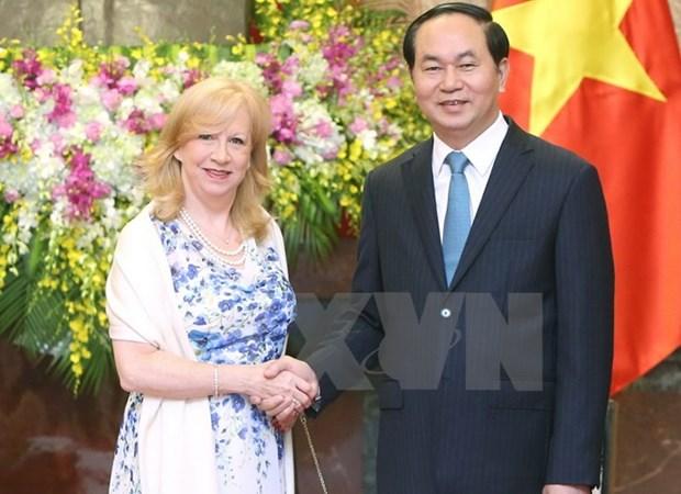 越南国家主席陈大光会见南非副总统和英国议会下议院副议长 hinh anh 2
