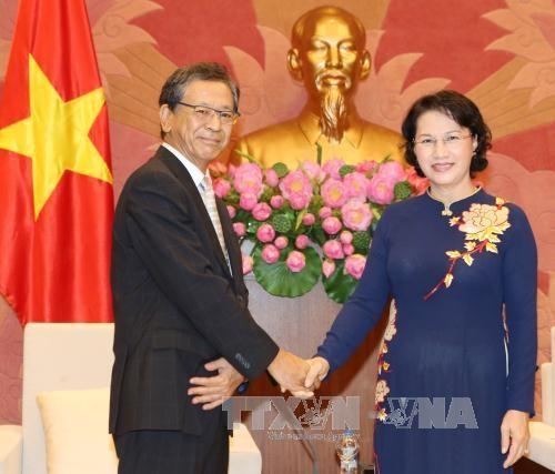越南国会主席阮氏金银会见前来辞行拜会的日本驻越大使大岛浩 hinh anh 1