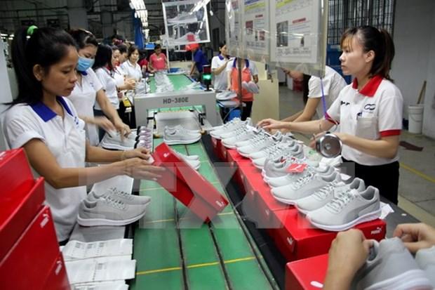 《越南—欧盟自由贸易协定》生效五年后越南将取消经济需求测试 hinh anh 1