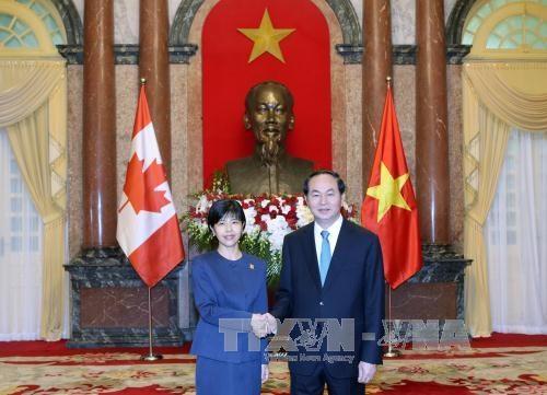 越南国家主席陈大光接受七国新任驻越大使递交国书 hinh anh 2