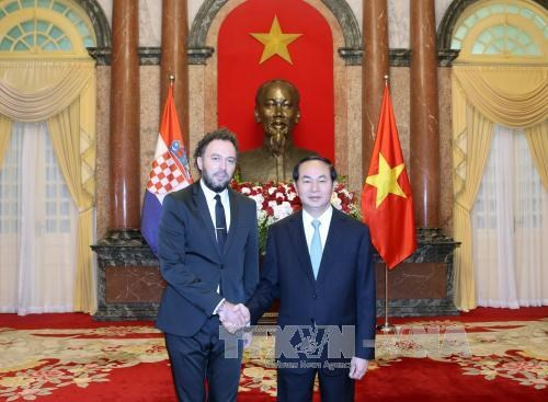 越南国家主席陈大光接受七国新任驻越大使递交国书 hinh anh 6