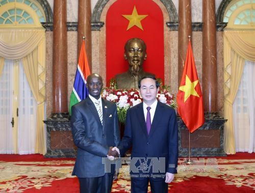 越南国家主席陈大光接受七国新任驻越大使递交国书 hinh anh 5