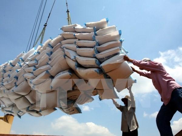 2016年前9月柬埔寨大米出口量下降2.1% hinh anh 1