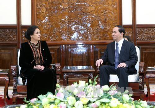 越南国家主席陈大光接受七国新任驻越大使递交国书 hinh anh 7