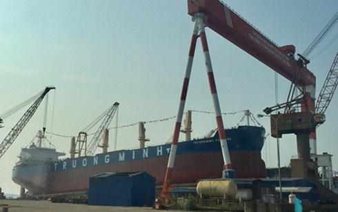 海防市56200吨散货船成功下水 hinh anh 1