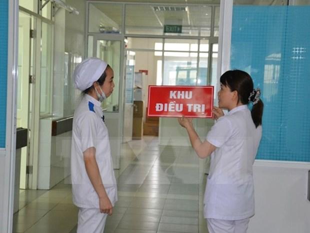 胡志明市和平阳省正抓紧实施寨卡疫区的调查处理工作 hinh anh 1