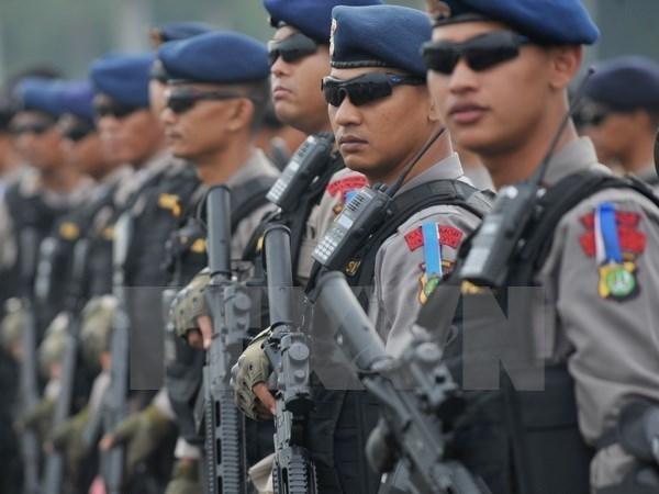 新加坡与印度尼西亚加强安全和反恐合作 hinh anh 1