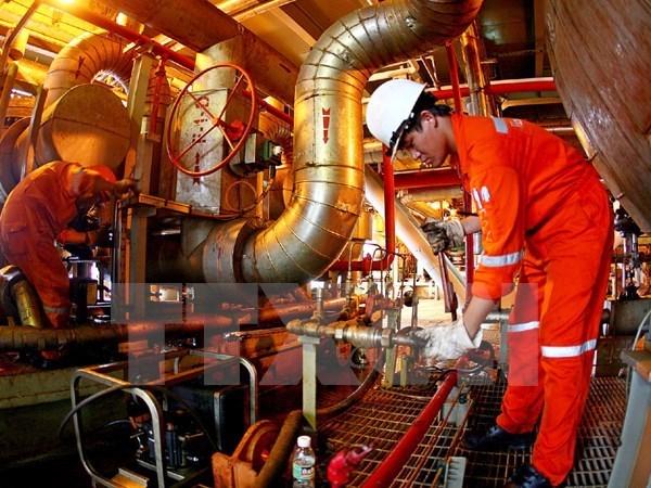 越南国家油气集团预计油气开采量增加约650万吨 hinh anh 1