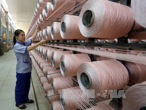 中国台湾远东集团拟扩大在越南平阳省的生产规模 hinh anh 1