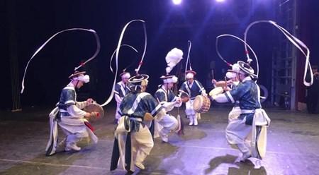 """题为""""越南与韩国旋律""""的文艺晚会在越南平定省举行 hinh anh 1"""