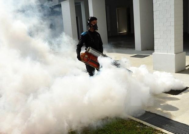 新加坡有效控制境内最大寨卡疫区的疫情 hinh anh 1
