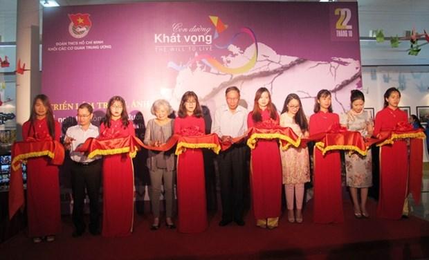 加大越共中央机构共青团团员在协助橙毒剂受害者工作中的参与度 hinh anh 1