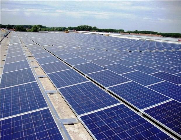 晶科能源控股有限公司拟在越南后江省投资兴建太阳能发电厂 hinh anh 1