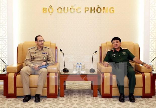 联合国协助越南更有效地参与其维和行动 hinh anh 1