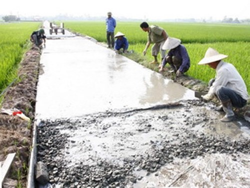 13个省市获得新农村建设运动中的优秀成绩奖 hinh anh 1