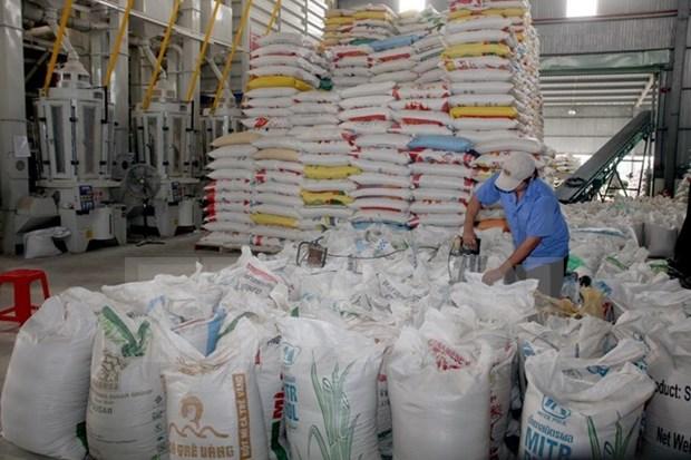 今年前10月越南大米出口达420万吨 hinh anh 1