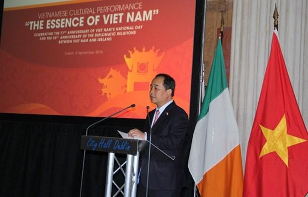 爱尔兰希望拓展与越南的经济及教育合作 hinh anh 1