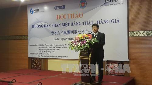 越南与日本加强知识产权保护工作的合作 hinh anh 1