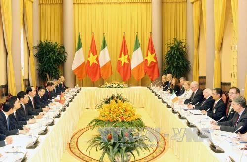 越南国家主席陈大光与爱尔兰总统麦克·希金斯举行会谈 hinh anh 1