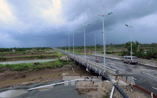 越南九龙江三角洲地区与日本广岛市加强环境技术合作 hinh anh 1