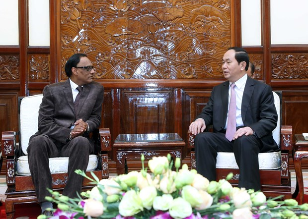 越南国家主席陈大光会见前来递交国书的各国新任驻越大使 hinh anh 8