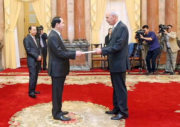 越南国家主席陈大光会见前来递交国书的各国新任驻越大使 hinh anh 4