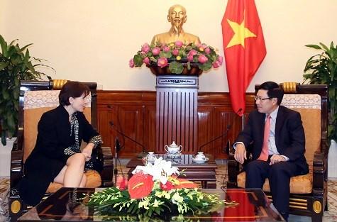 越南政府副总理兼外交部长范平明会见意大利驻越南大使 hinh anh 1