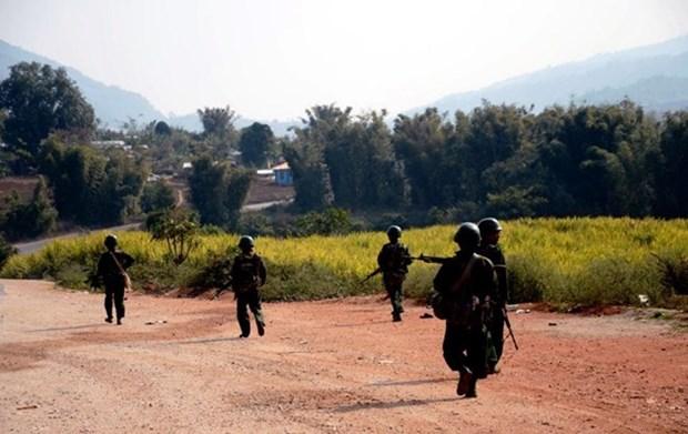 缅甸若开邦军队击毙25名武装分子 hinh anh 1
