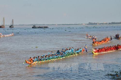 柬埔寨传统划船比赛吸引14630名运动员参加 hinh anh 1