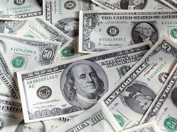 越盾兑美元中心汇率较前一日上涨19越盾 hinh anh 1