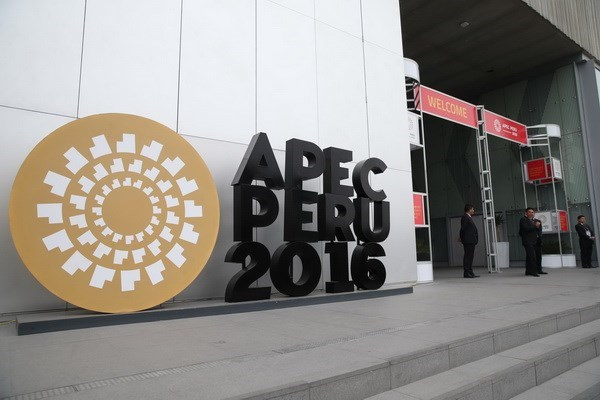 越南在推进APEC合作进程中发挥积极作用 hinh anh 1