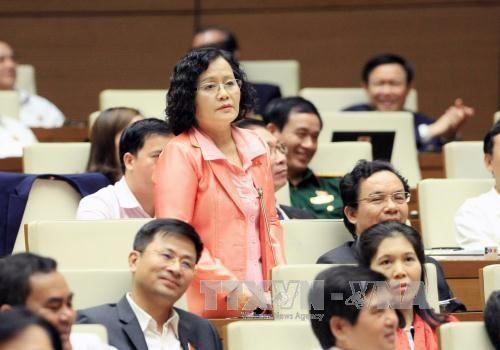 越南第十届国会第二次会议:选民高度评价质询会的内容 hinh anh 1