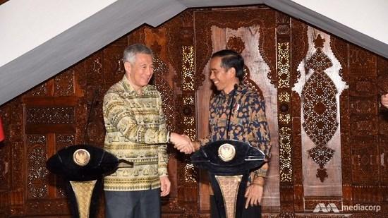 印尼与新加坡进一步促进合作 hinh anh 1