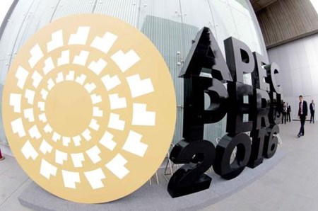 出席APEC24会议:越南为办好2017年APEC系列会议做准备 hinh anh 1