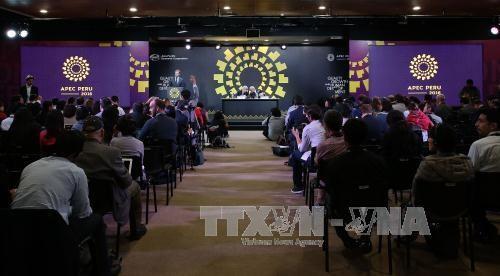 亚太经合组织经贸-外交部长级会议在秘鲁召开 hinh anh 1