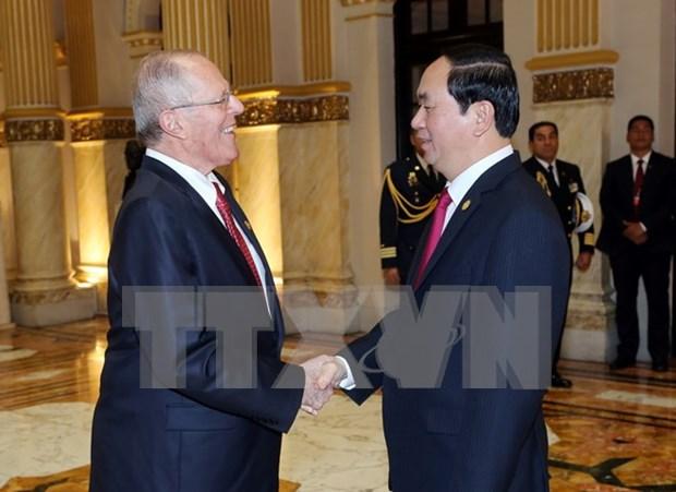 越南国家主席陈大光与秘鲁共和国总统佩德罗举行会谈 hinh anh 1