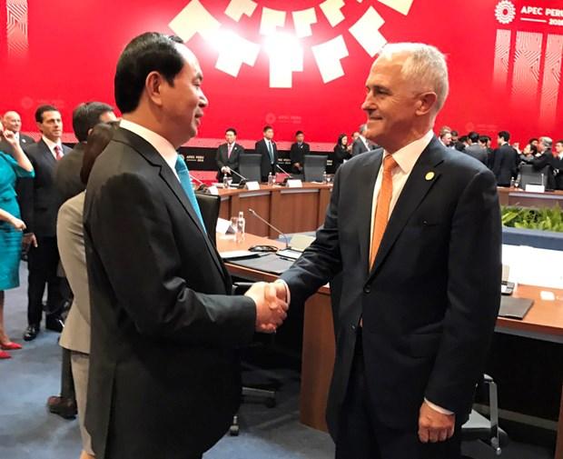 陈大光主席与各国元首和领导人举行双边会晤 hinh anh 5