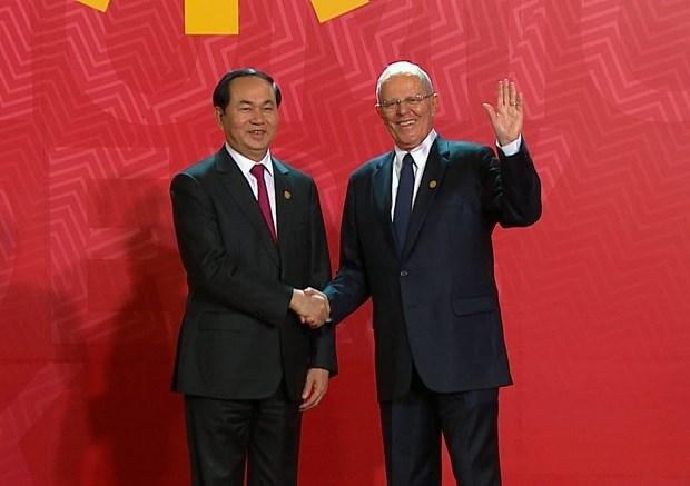 越南国家主席陈大光出席2016年亚太经合组织领导人会议周 hinh anh 1