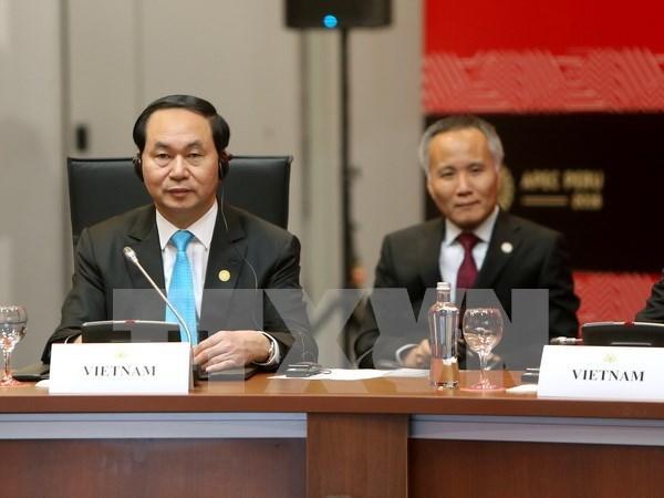 越南国家主席陈大光出席2016年亚太经合组织领导人会议周 hinh anh 5