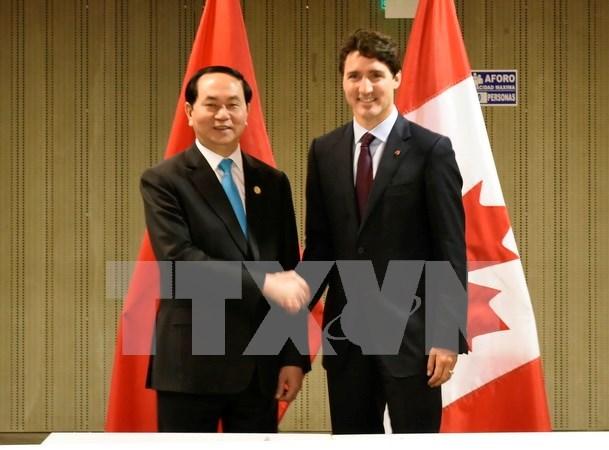 陈大光主席与各国元首和领导人举行双边会晤 hinh anh 3