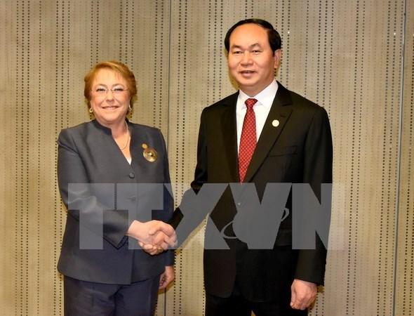 陈大光主席与各国元首和领导人举行双边会晤 hinh anh 2