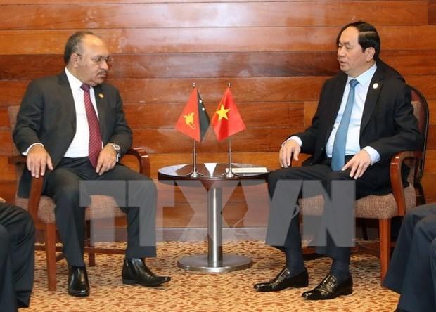 陈大光主席与各国元首和领导人举行双边会晤 hinh anh 4