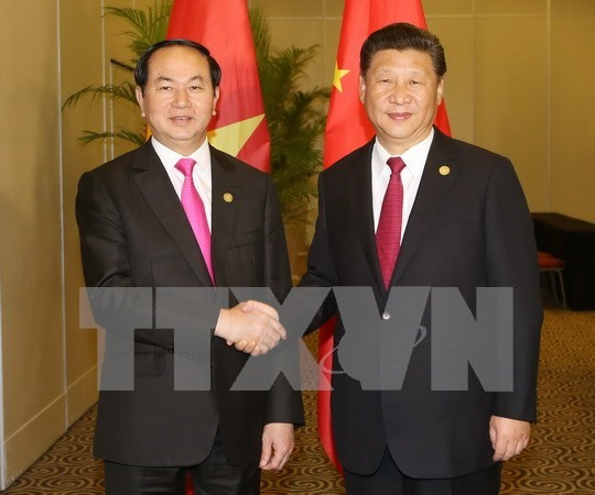 国家主席陈大光会见中国国家主席习近平 hinh anh 1