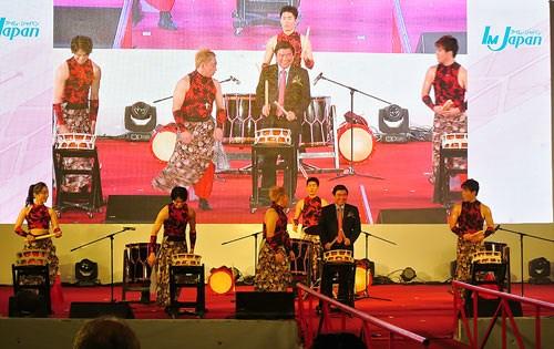 2016越日文化节在胡志明市举行 hinh anh 1