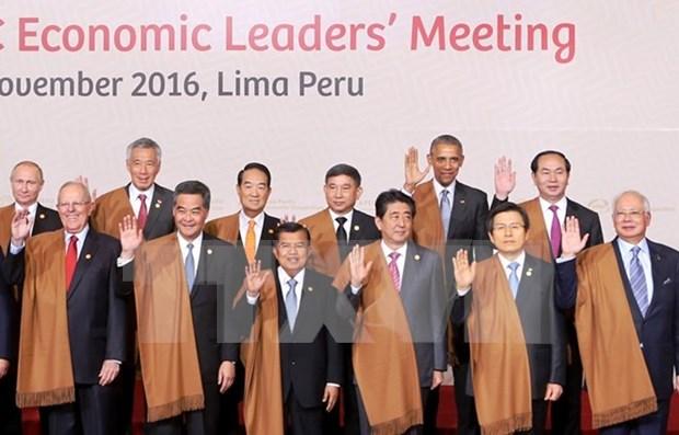 国家主席陈大光出席APEC领导人第一阶段会议 hinh anh 1