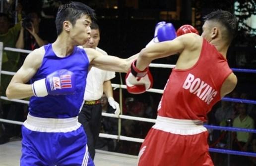 越-日拳击友谊赛:越南队取得4胜 hinh anh 1