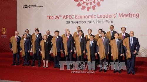 APEC成员国对越南2017年APEC会议抱有巨大期望 hinh anh 1